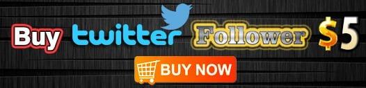 buy-twitter-followers-for-$5