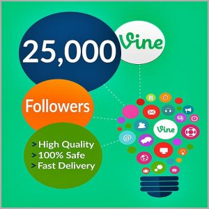 25000-vine-followers