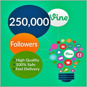 250000-vine-followers
