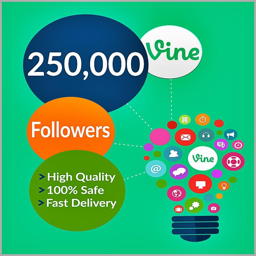 250000-vine-followers