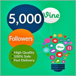 5000-vine-followers