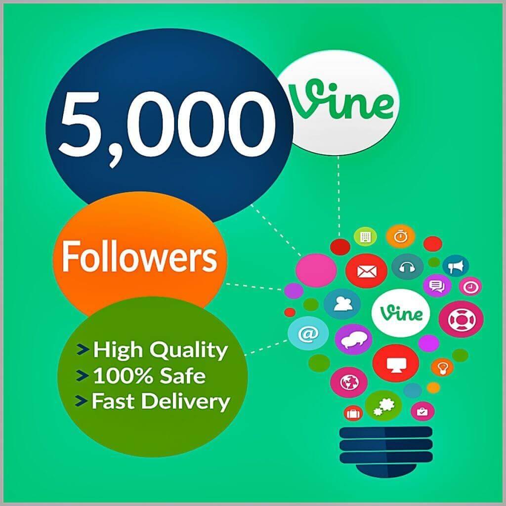 5000-vine-followers