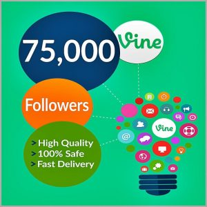75000-vine-followers