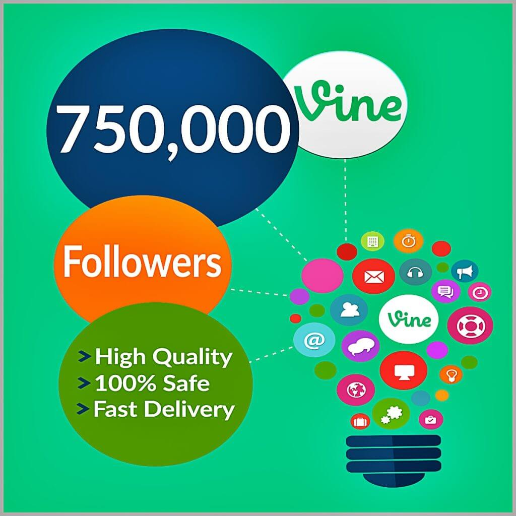 750000-vine-followers
