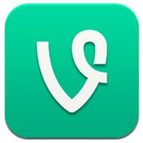 Vine Views